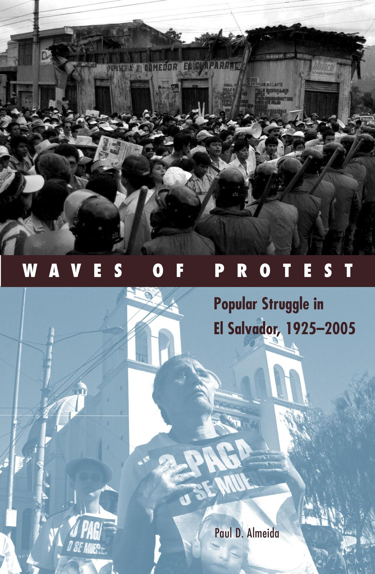 Waves of Protest book cover
